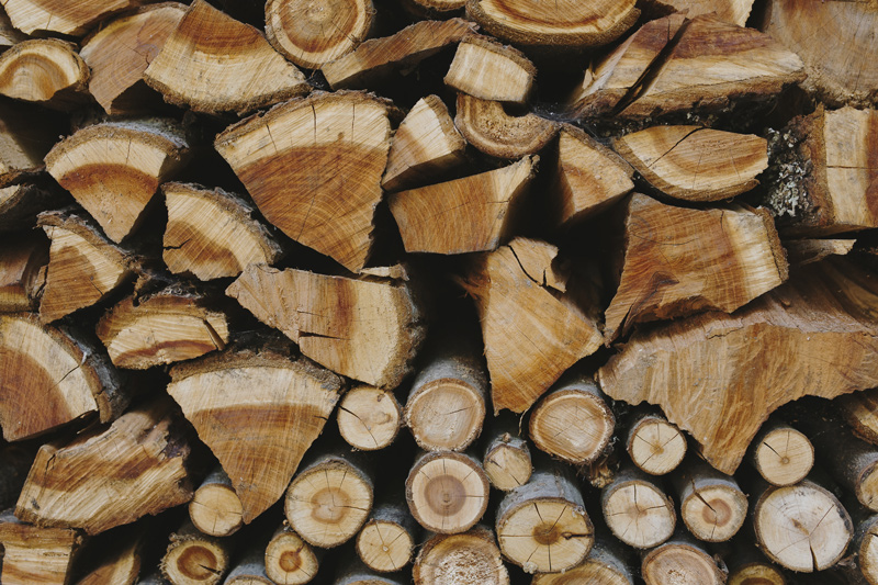 Greenrod, votre partenaire en élagage, essouchage, et fendage de bois prépare vos bûches pour l'hiver