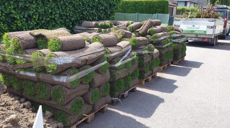 Pose de rouleaux de gazon pour création de pelouse sur mesure par Greenrod - votre partenaire multi-services