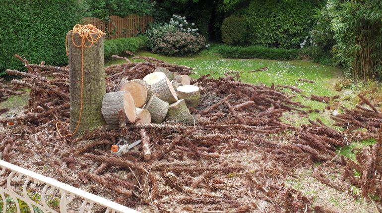 Besoin d'abattre des arbres et de couper le bois en bûches ? Pensez Greenrod - élagage - taille et coup d'arbres et de haies, entretien de jardins