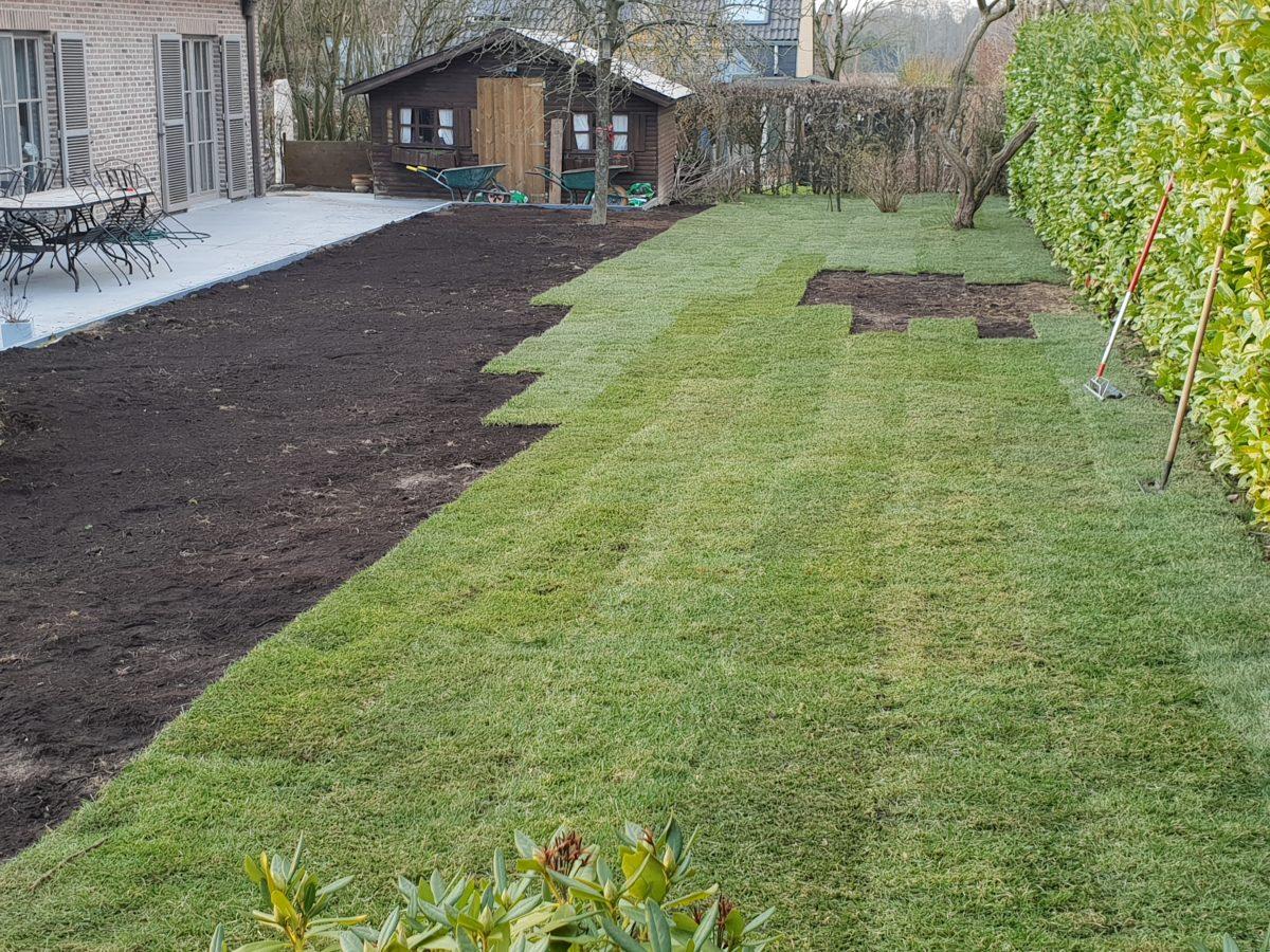 Pose d'une pelouse en rouleaux par Greenrod, votre partenaire en entretien de jardins, élagage, construction d'abris de jardin etc.